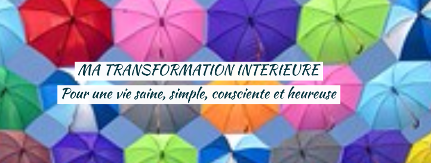 cropped-BLOG-MA-TRANSFORMATION-INTERIEURE-1.png