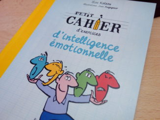 cahier intelligence émotionnelle