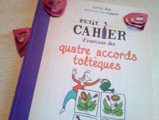 cahier exercices accords toltèques