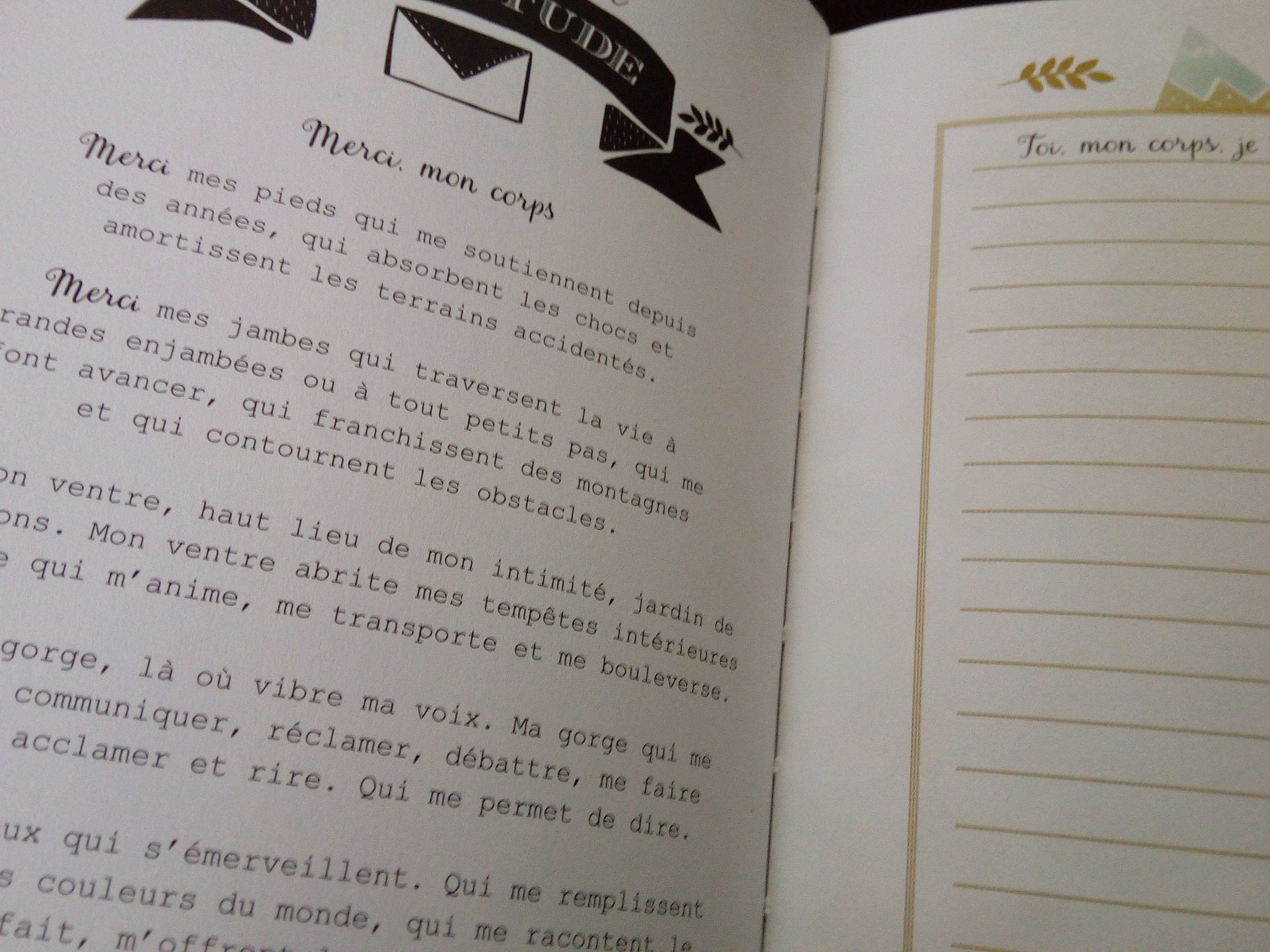 journal merci gratitude