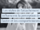 Les styles de l'attachement influencent la perception de l'autre et les comportements.